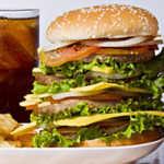 fat-junk-food