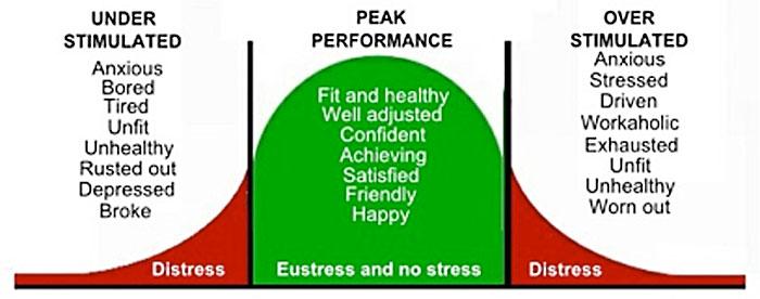 the-peak-performance-zone