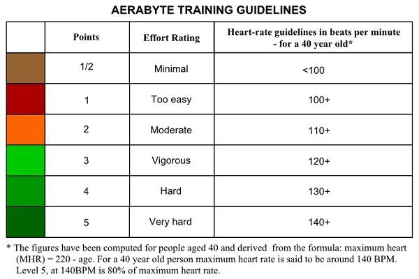 aerabyte-training-guidelines